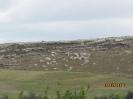 Indagini Geologiche-25